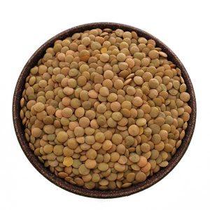 Imagem ilustrativa do produto lentilha
